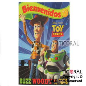 TOY STORY AFICHE x 1