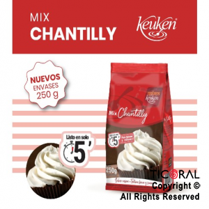 CREMA CHANTILLY X 250GR LODISER X 12